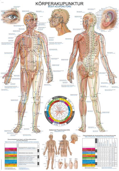 Körperakupunktur