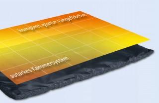 Spitzner Therm Warmpack klein 50 x 30 cm, je 1320 gramm - 2 Stück